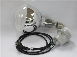 MV Exposure Lamp 500W Lamp & Assembly