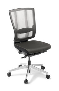 Eden Cloud Ergo Chair Chrome Base
