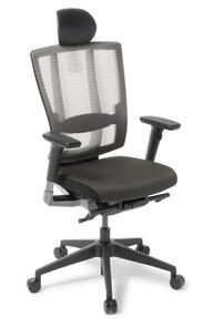 Eden Cloud Ergo Chair With Arms and Headrest