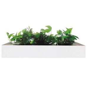 Mila Planter White