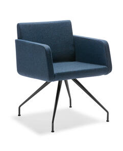 Eden Sofia Black Frame Chair with Arms