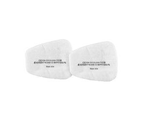 P2 Replacement Filters (10 pack)