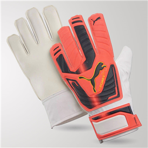Puma evoPOWER Grip 4 GK Gloves
