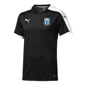 Puma Junior FC Nelson Pitch Training Shirt