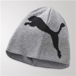 Puma Essentials Big Cat Beanie