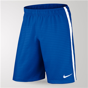 Nike Max Graphic Short – Blue