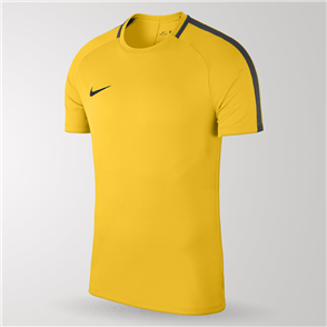 Nike Junior Academy 18 Jersey – Yellow