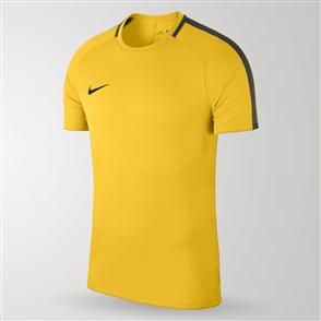 Nike Junior Academy 18 Jersey – Yellow