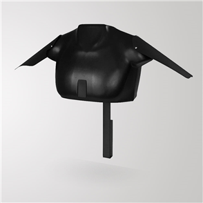 Champion Display 3D Jersey Wall Display Unit