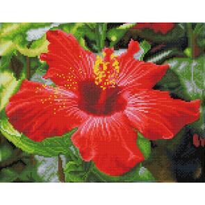 Diamond Dotz  Diamond Art Kit - Hibiscus In Bloom