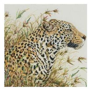 Anchor  Maia Cross Stitch Kit: Leopard Safari