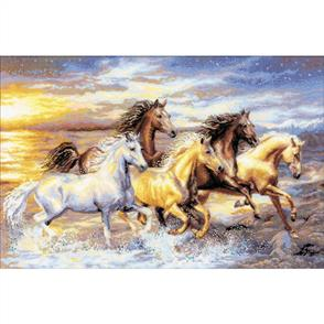 Riolis  In the Sunset - Cross Stitch Kit Premium