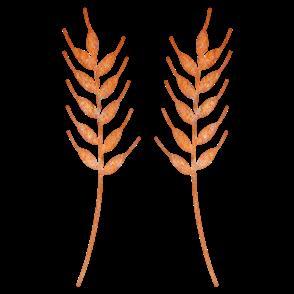 Cheery Lynn Dies - Wheat heads