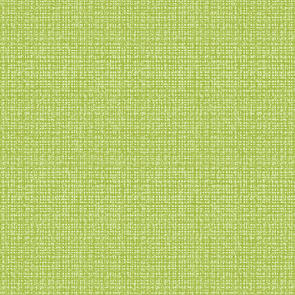 Benartex Contempo - Color Weave - Lime 6068-48