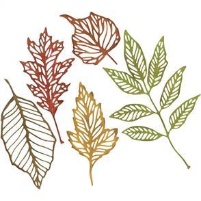 Sizzix Tim Holtz Thinlits Die Set 5PK - Skeleton Leaves