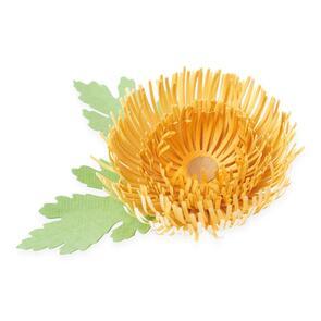 Sizzix  Chrysanthemum - 5 pack, Thinlits Die Set