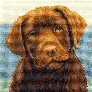 Dimensions  Cross Stitch Kit - Hot Chocolate (Dog)