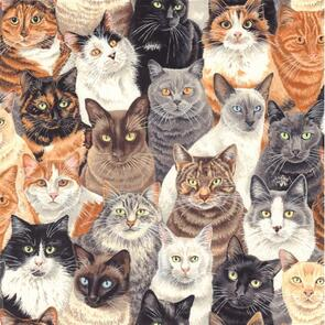 Nutex  Crowded Cats - 1 Multi