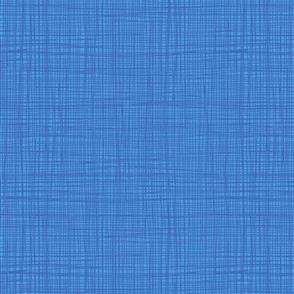 Henley Studio  Fabric - Linea Tonal - Riviera Blue