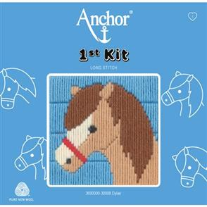 Anchor  1st Kit: Long Stitch Tapestry - Dylan