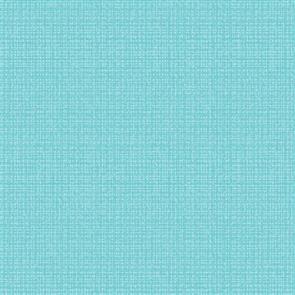 Benartex  Color Weave - Aqua 51