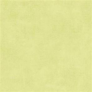 Riley Blake  Blenders - Vintage Green 41