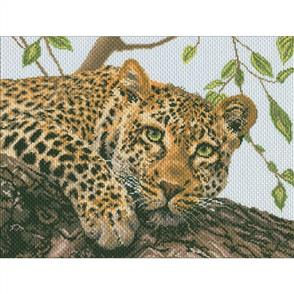 Collection D'Art  Printed Cross Stitch - Leopard