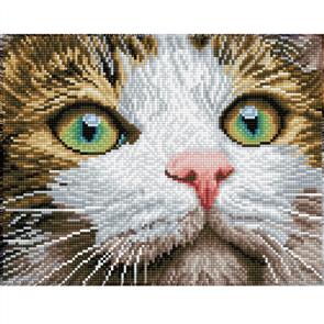 """Diamond Dotz Art Kit - Green Eyed Beauty 14 x 10"""""""
