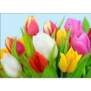 Collection D'Art Diamond Art Kit - Dew On Tulips 27x38cm