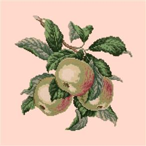 Elizabeth Bradley  Tapestry Kit - Apples (Salmon Pink Background Wool)