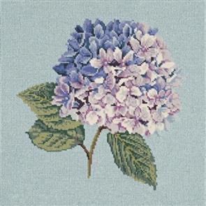 Elizabeth Bradley  Tapestry Kit - Hydrangea (Duck Egg Blue Background Wool)