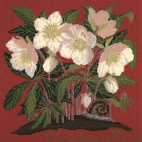 Elizabeth Bradley  Tapestry Kit - Christmas Rose (Bright Red Background Wool)