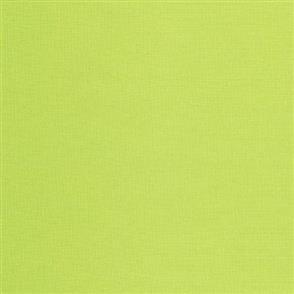 Robert Kaufman Kona Solids -254 Sprout