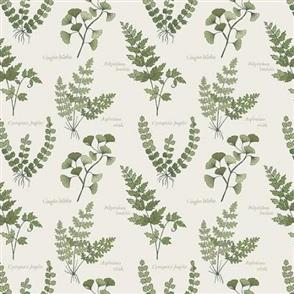 Lewis & Irene  Lewis and Irene - The Botanist - Ferns and Leaves Cream