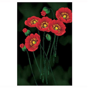 Needle Art World  No Count Cross Stitch Kit - Red Poppies on Black
