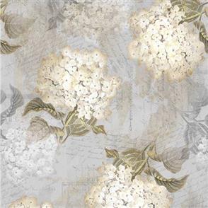 Hoffman Fabric  - Vintage Hydrangeas & Text - LIGHT GRAY