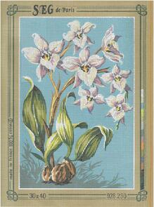 SEG De Paris  Tapestry Canvas 30X40 #230