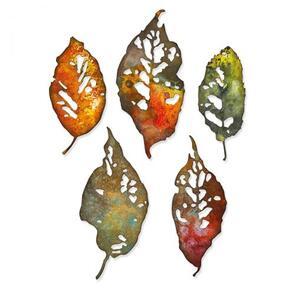 Sizzix Tim Holtz Thinlits Die Set - Leaf Fragments 5pk