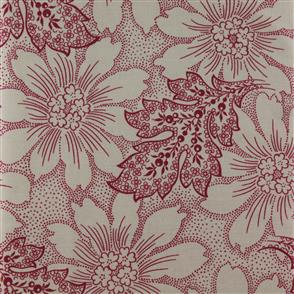 Timeless Treasures Fabric - Rouge - 3891 Beige