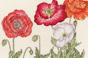 Bothy Threads  Cross Stitch Kit - Poppy Blooms
