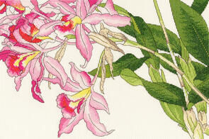 Bothy Threads  Cross Stitch Kit - Orchid Blooms