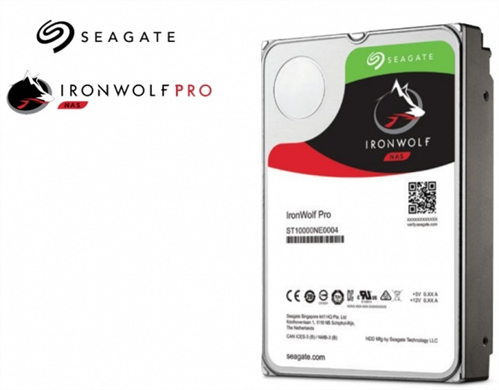 IronWolf Pro 10TB Hard Disk Drive for NAS