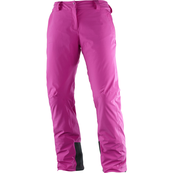 Salomon Icemania Wmns Pant - Regular