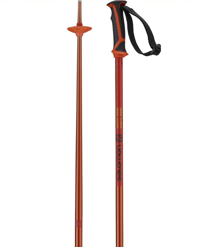 Salomon Arctic Ski Pole