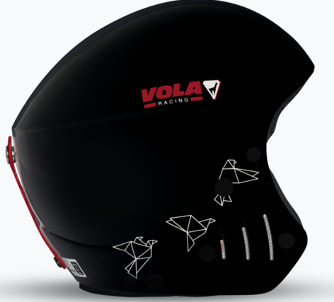 Vola Wild FIS Helmet