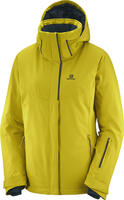 Salomon Stormpunch Wmns  Jacket