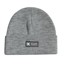 DC Label Beanie - Frost Gray
