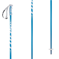 Scott 540 Pole