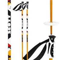 Scott Remit Ski Pole